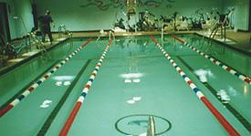 50-Year-Old Basement Pool